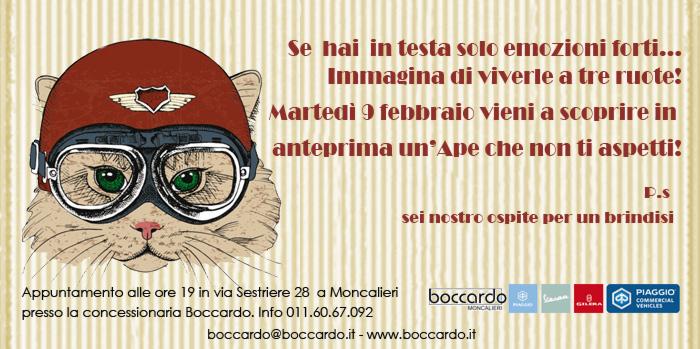 boccardo_proto